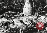 Image of United States soldiers Enewetak Atoll Marshall Islands, 1944, second 53 stock footage video 65675061241