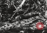 Image of United States soldiers Enewetak Atoll Marshall Islands, 1944, second 59 stock footage video 65675061241