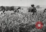 Image of United States troops advance Argonne forest France, 1918, second 13 stock footage video 65675061250