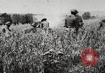 Image of United States troops advance Argonne forest France, 1918, second 14 stock footage video 65675061250