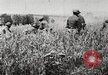 Image of United States troops advance Argonne forest France, 1918, second 15 stock footage video 65675061250