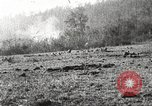 Image of United States troops advance Argonne forest France, 1918, second 27 stock footage video 65675061250