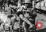 Image of United States soldiers relaxing World War 1 France, 1918, second 30 stock footage video 65675061255