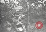 Image of dead German soldiers Verdun France, 1916, second 16 stock footage video 65675061261