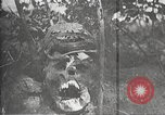 Image of dead German soldiers Verdun France, 1916, second 18 stock footage video 65675061261