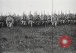 Image of General Joseph Joffre France, 1916, second 30 stock footage video 65675061265