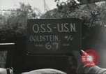 Image of Allied troops Normandy France, 1944, second 3 stock footage video 65675061286