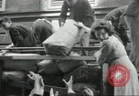 Image of French civilians Paris France, 1944, second 39 stock footage video 65675061297