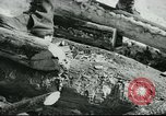 Image of farmer United States USA, 1940, second 49 stock footage video 65675061310