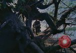 Image of Military Police United States USA, 1976, second 24 stock footage video 65675061449