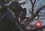 Image of Military Police United States USA, 1976, second 27 stock footage video 65675061449