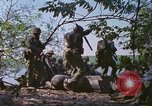 Image of Military Police United States USA, 1976, second 30 stock footage video 65675061449