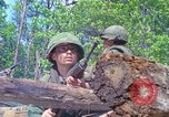 Image of Military Police United States USA, 1976, second 7 stock footage video 65675061454