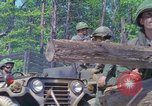 Image of Military Police United States USA, 1976, second 10 stock footage video 65675061454