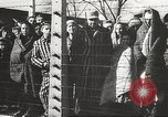 Image of prisoners Poland, 1945, second 2 stock footage video 65675061516