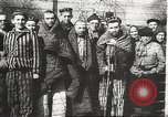 Image of prisoners Poland, 1945, second 14 stock footage video 65675061516