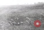 Image of Austrian troops European Theater, 1914, second 25 stock footage video 65675061518