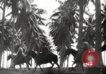 Image of marines Pacific Ocean, 1944, second 22 stock footage video 65675061531