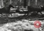 Image of marines Pacific Ocean, 1944, second 26 stock footage video 65675061531