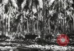 Image of marines Pacific Ocean, 1944, second 31 stock footage video 65675061531