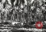 Image of marines Pacific Ocean, 1944, second 32 stock footage video 65675061531