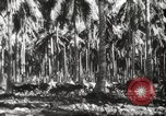 Image of marines Pacific Ocean, 1944, second 33 stock footage video 65675061531