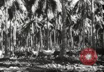 Image of marines Pacific Ocean, 1944, second 34 stock footage video 65675061531