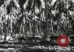 Image of marines Pacific Ocean, 1944, second 35 stock footage video 65675061531
