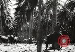 Image of marines Pacific Ocean, 1944, second 38 stock footage video 65675061531