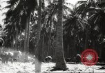 Image of marines Pacific Ocean, 1944, second 40 stock footage video 65675061531