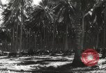 Image of marines Pacific Ocean, 1944, second 43 stock footage video 65675061531