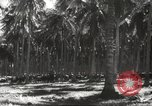 Image of marines Pacific Ocean, 1944, second 44 stock footage video 65675061531