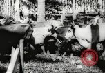 Image of marines Pacific Ocean, 1944, second 50 stock footage video 65675061531