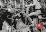 Image of marines Pacific Ocean, 1944, second 57 stock footage video 65675061531
