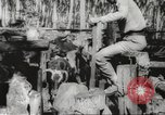 Image of marines Pacific Ocean, 1944, second 58 stock footage video 65675061531