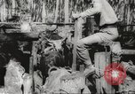 Image of marines Pacific Ocean, 1944, second 59 stock footage video 65675061531