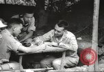 Image of Allied P-40 aircraft bombing Japanese at Myitkina in World War II Burma, 1944, second 10 stock footage video 65675061532
