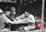Image of Allied P-40 aircraft bombing Japanese at Myitkina in World War II Burma, 1944, second 11 stock footage video 65675061532