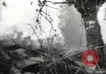Image of Allied P-40 aircraft bombing Japanese at Myitkina in World War II Burma, 1944, second 34 stock footage video 65675061532
