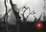 Image of Allied P-40 aircraft bombing Japanese at Myitkina in World War II Burma, 1944, second 41 stock footage video 65675061532