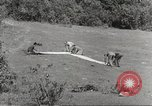 Image of United States troops China-Burma-India Theater, 1944, second 32 stock footage video 65675061535