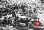 Image of Allied troops Burma, 1944, second 3 stock footage video 65675061536