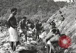 Image of 116th Engineer Battalion 41st Division soldiers New Guinea, 1943, second 13 stock footage video 65675061550