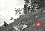 Image of 116th Engineer Battalion 41st Division soldiers New Guinea, 1943, second 60 stock footage video 65675061550