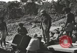 Image of United States 116th Engineer Battalion 41st Division soldiers New Guinea, 1943, second 27 stock footage video 65675061551