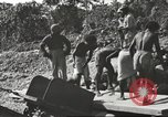 Image of United States 116th Engineer Battalion 41st Division soldiers New Guinea, 1943, second 34 stock footage video 65675061551