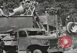 Image of United States 116th Engineer Battalion 41st Division soldiers New Guinea, 1943, second 46 stock footage video 65675061551