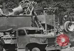 Image of United States 116th Engineer Battalion 41st Division soldiers New Guinea, 1943, second 48 stock footage video 65675061551