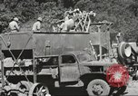 Image of United States 116th Engineer Battalion 41st Division soldiers New Guinea, 1943, second 51 stock footage video 65675061551
