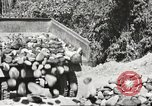 Image of United States 116th Engineer Battalion 41st Division soldiers New Guinea, 1943, second 55 stock footage video 65675061551